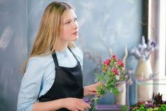 Флорист думая о аранжировать цветки, составляя флористическую страну чудес стоковые фотографии rf