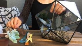 Флорист женщины льет дренаж к стеклянному terrarium Вид спереди сток-видео