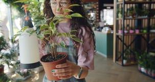 Флорист молодой женщины распыляя в горшке завод с водой в цветочном магазине акции видеоматериалы