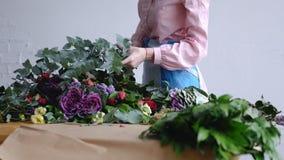 Флорист составляет большую ветвь евкалипта для букета стоковое изображение rf