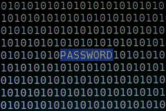 Фокусируя текст пароля на экране компьютера Стоковое Изображение RF