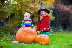Фокус детей или обрабатывать на хеллоуине стоковое фото rf