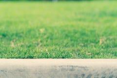 Фокус и конец поля зеленой травы мягкие вверх по зеленой траве Принципиальная схема дня земли Стоковые Изображения