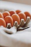 фокус 2 коричневых яичек первый Стоковые Фото