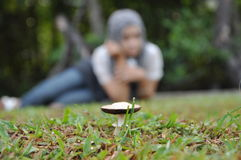Фокус на грибе Стоковая Фотография