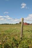 Фокус на проволочной изгороди колючки Стоковые Фото