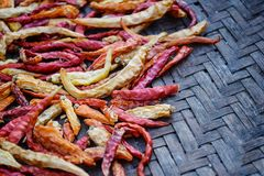 Фокус сухого chili мягкий Стоковое Фото