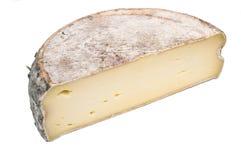 фолиант savoy сыра половинный Стоковая Фотография RF