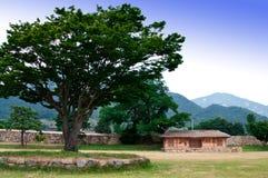 фольклорное nagan село стоковое фото