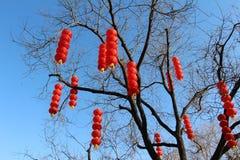 фонарики красные Стоковые Фото