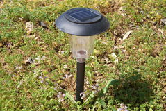 Фонарик лампы светлый в саде Стоковое Изображение