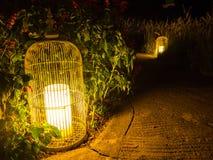 Фонарик в саде ночи Стоковые Изображения RF