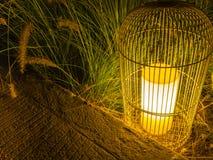 Фонарик в саде ночи Стоковое Изображение RF