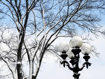 Фонарик покрытый с снегом, около дерева, против неба Стоковое Изображение RF