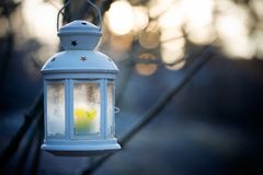фонарик Стоковое фото RF