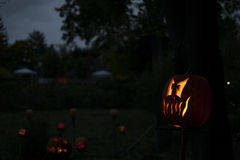 фонарик o jack Стоковое Фото