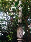 Фонарный столб и вегетация Стоковое фото RF