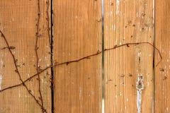 Фоновое изображение показывает старый ограждать с лозой в зиме стоковое изображение rf