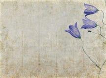 фоновое изображение симпатичное Стоковые Фото