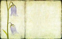 фоновое изображение симпатичное иллюстрация штока
