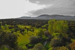 Фоновое изображение яркого солнечного дня на поле травы и mounta стоковое изображение