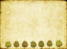 фоновое изображение бесплатная иллюстрация
