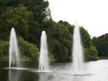 Фонтаны в озере в парке Стоковая Фотография