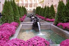 Фонтаны сада канала стоковые фотографии rf