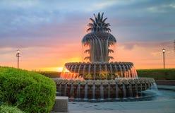 Фонтан ананаса парка портового района Чарлстона Стоковые Фото