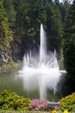 фонтан большой Стоковые Изображения RF