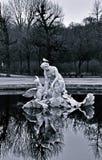 Фонтан Венеры в парке Schönbrunn, monochrome Стоковое Изображение RF