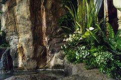 Фонтан внутри комнаты с заводами и цветками Стоковые Фотографии RF