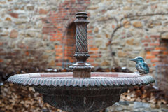 Фонтан в исторической части городка Баутцена, Саксонии стоковые фотографии rf