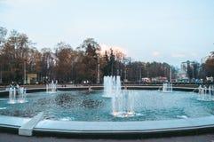 Фонтан в парке в лете Стоковые Фото