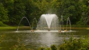 Фонтан в пруде Вокруг деревьев сток-видео