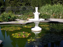 Фонтан в саде Nikitsky ботаническом Стоковая Фотография