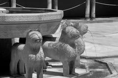 Фонтан и статуи сада львов Стоковые Изображения