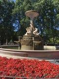 Фонтан окруженный цветками Стоковые Фотографии RF