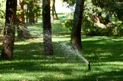 Фонтан полива в парке стоковое изображение