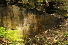 фонтан пущи fontainebleau Стоковые Фото