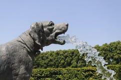 Фонтан собаки стоковое фото rf