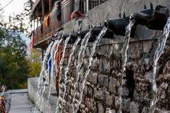 Фонтан стены, вода пропуская через животное сформировал сопла Стоковое фото RF