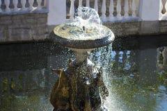 Фонтан с скульптурами гусынь Стоковая Фотография RF