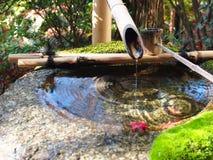 Фонтан, японский сад, сад Дзэн, бамбуковый фонтан Стоковые Изображения RF