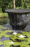 фонтан bali стоковое изображение rf