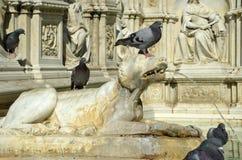 фонтан gaia Италия siena детали Стоковые Фото