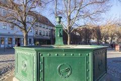 Фонтан Goethe на квадрате Frauenplatz Стоковое Изображение RF