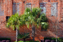 Фон кирпичной стены Стоковое Изображение