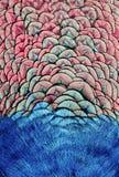 Фон яркой, красочной картины fabul пер удивительного Стоковое Изображение
