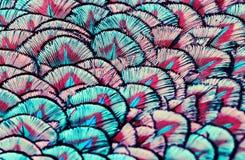 Фон яркой, красочной картины fabulo пер удивительного Стоковое фото RF